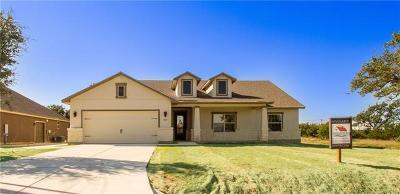 Blanco Single Family Home For Sale: 202 N Calvin Barrett