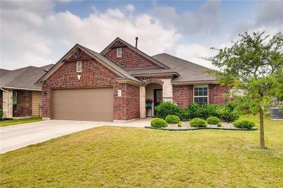 Kyle Single Family Home For Sale: 111 Desert Rose Dr