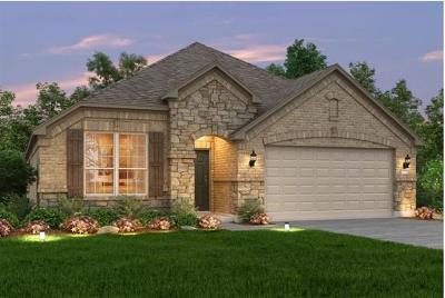 Round Rock Single Family Home For Sale: 6133 Gimignano Pl