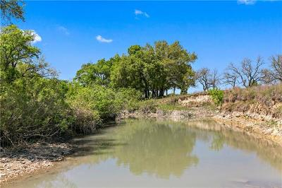 Liberty Hill Farm For Sale: 0001 Cowboy Trail