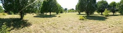 Georgetown Residential Lots & Land For Sale: 1625 Cr 106