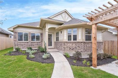 Pflugerville Single Family Home For Sale: 18021 Lungo