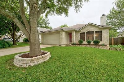 Austin Single Family Home For Sale: 3117 Raging River Dr
