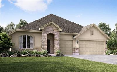 Pflugerville Single Family Home For Sale: 20336 Clare Island Bend Ct