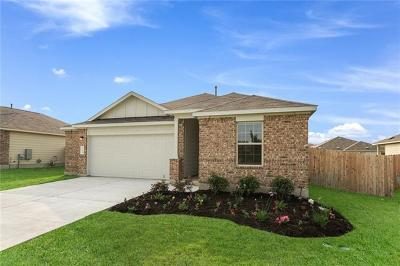 Kyle Single Family Home For Sale: 248 Mineral Springs Dr
