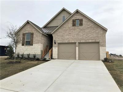 Single Family Home For Sale: 6749 Brindisi Pl