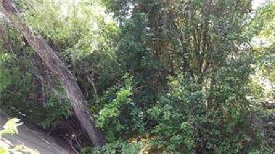 Austin Residential Lots & Land For Sale: 1204 Maple Ave