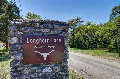 Dripping Springs Single Family Home For Sale: 110 Longhorn Ln