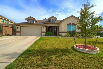 Buda Single Family Home For Sale: 259 Summer Vista Dr