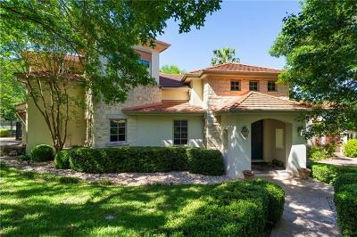 Hays County, Travis County, Williamson County Single Family Home For Sale: 8208 Scenic Ridge Cv