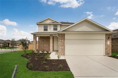 Buda Single Family Home For Sale: 165 Greenbriar St