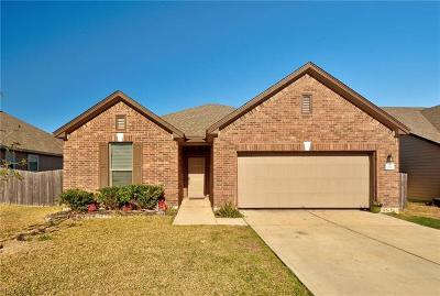 Kyle Single Family Home For Sale: 213 Connor Elkins Dr