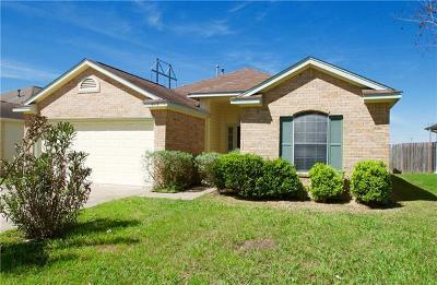 Lockhart Single Family Home For Sale: 213 Summerside Ave