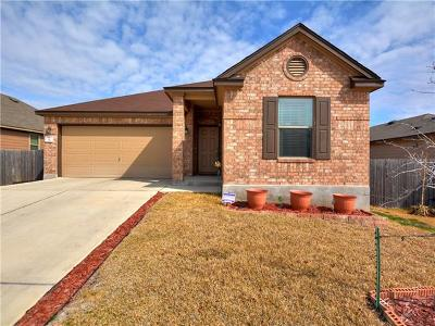 Kyle Single Family Home For Sale: 321 Gina Dr