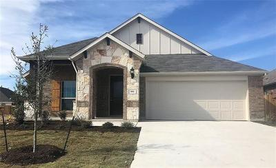 Buda Single Family Home For Sale: 166 Coral Berry Dr