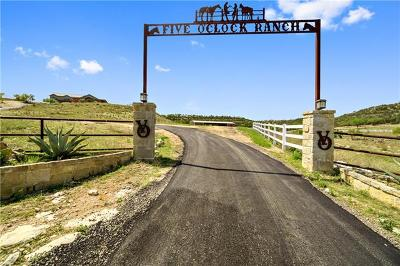 Dripping Springs Farm For Sale: 11235 Grand Summit Blvd
