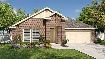 Round Rock Single Family Home For Sale: 856 Winnsboro Dr
