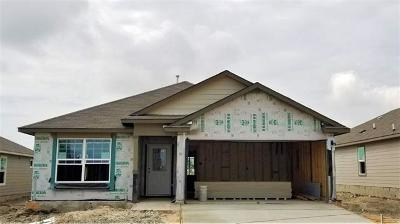 San Marcos Single Family Home For Sale: 236 Lance