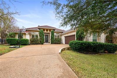Travis County Single Family Home For Sale: 4709 Snake Eagle Cv