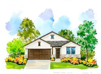 Pflugerville Single Family Home For Sale: 16921 Borromeo Avenue
