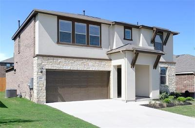 San Marcos Single Family Home For Sale: 221 Braeden Brooke Drive