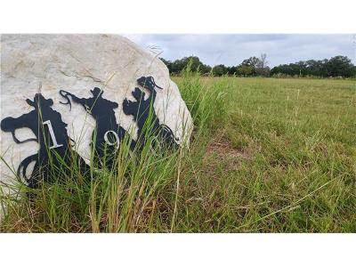 Hays County Residential Lots & Land For Sale: 190 Thunder Pony Trl
