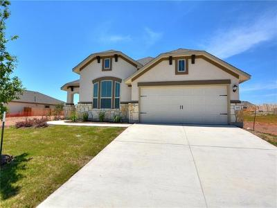 Kyle Single Family Home For Sale: 365 Tailwind Dr