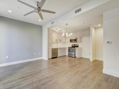 Hays County, Travis County, Williamson County Condo/Townhouse For Sale: 604 N Bluff Dr #206