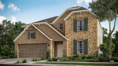 Round Rock Single Family Home For Sale: 5173 Veranda Ter