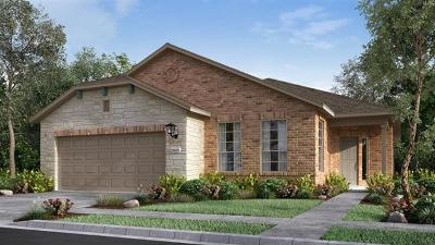 Round Rock Single Family Home For Sale: 3305 Bianco Ter