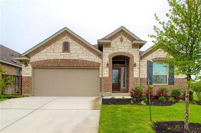 Georgetown Single Family Home For Sale: 3137 Rabbit Creek Dr