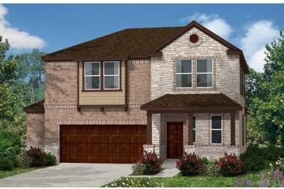 Kyle Single Family Home For Sale: 311 Jarbridge Dr