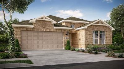 Travis County, Williamson County Single Family Home For Sale: 5125 Veranda Ter