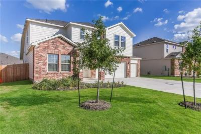 Hays County, Travis County, Williamson County Single Family Home For Sale: 203 Mineral Springs Dr