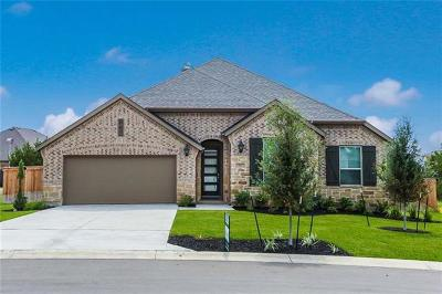 Hays County Single Family Home For Sale: 127 Short Bush Pass