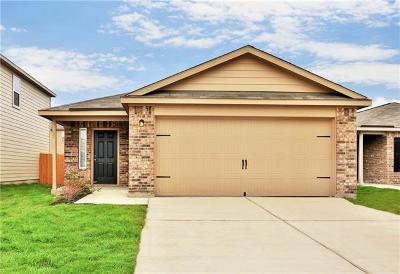 Kyle Single Family Home For Sale: 1383 Breanna Ln