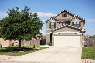 Kyle Single Family Home For Sale: 133 Rummel Dr