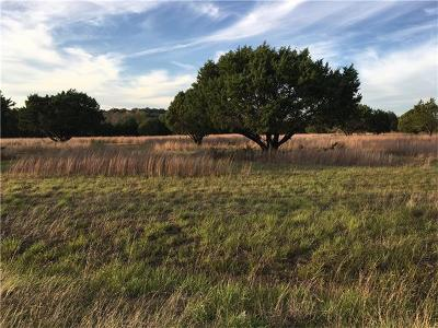 Leander Residential Lots & Land For Sale: Lot 9, 10, 11 and 16 Sweet Summer Dr