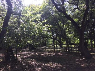 Travis County Residential Lots & Land For Sale: 10616 Creekview Dr