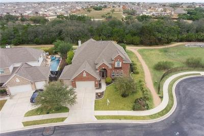 Austin Single Family Home For Sale: 16409 Along Creek Cv