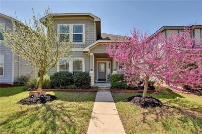 Pflugerville Single Family Home For Sale: 719 Craters Of The Moon Blvd