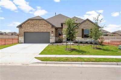 Pflugerville Single Family Home For Sale: 20320 Clare Island Bend Ct