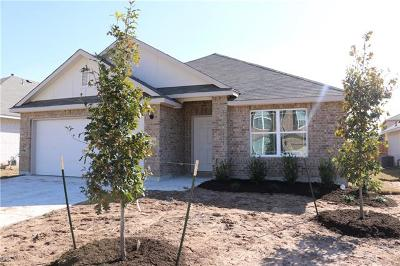 Round Rock Single Family Home For Sale: 5655 Sabbia Dr