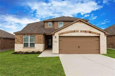 Kyle Single Family Home For Sale: 1459 Violet Ln