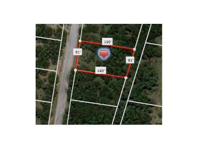 Travis County Residential Lots & Land For Sale: 2701 Wilson Ave