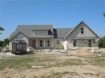 Burnet County Single Family Home For Sale: 104 Honey Rock Blvd