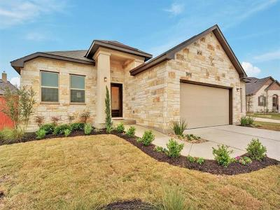 Georgetown Single Family Home For Sale: 217 Oxbow Cv