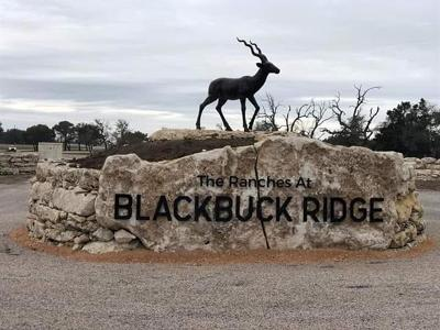 Lampasas County Residential Lots & Land For Sale: 300 Waterbuck Way