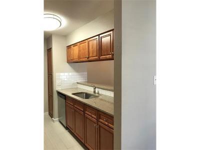 Austin Condo/Townhouse For Sale: 10616 Mellow Meadows Dr #1C