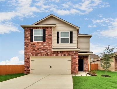 Kyle Single Family Home For Sale: 1382 Breanna Ln